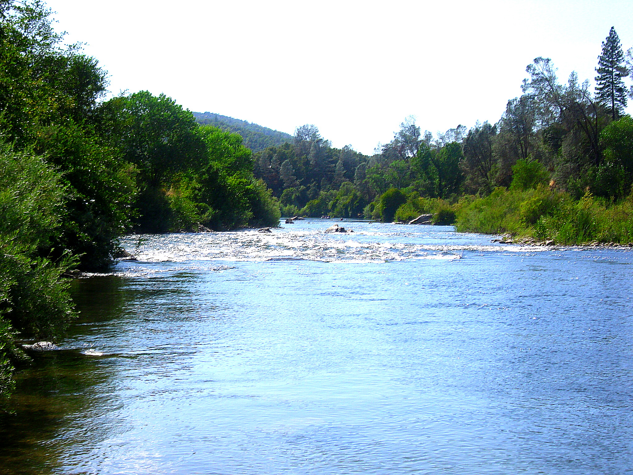 river pic for blog 1