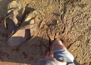 quicksand_705_300