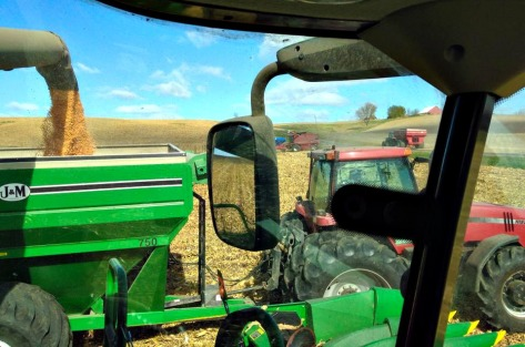 corn into cart, edited, Doug's farm in background