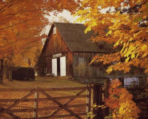 barn in autumn for blog jpg