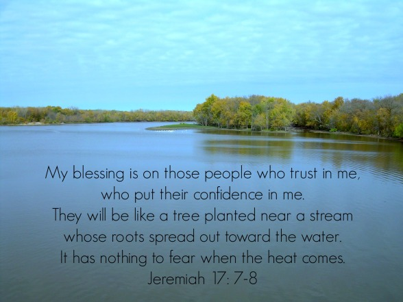 River, trees, edited for blog Jeremiah 17