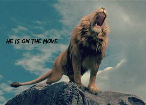 aslan-on-the-move-edit-with-text