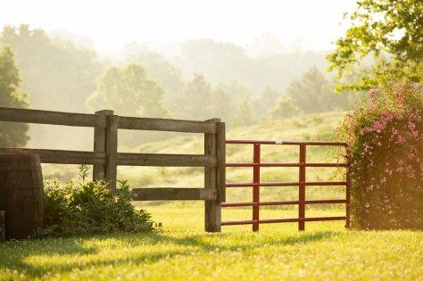 Gate, field free